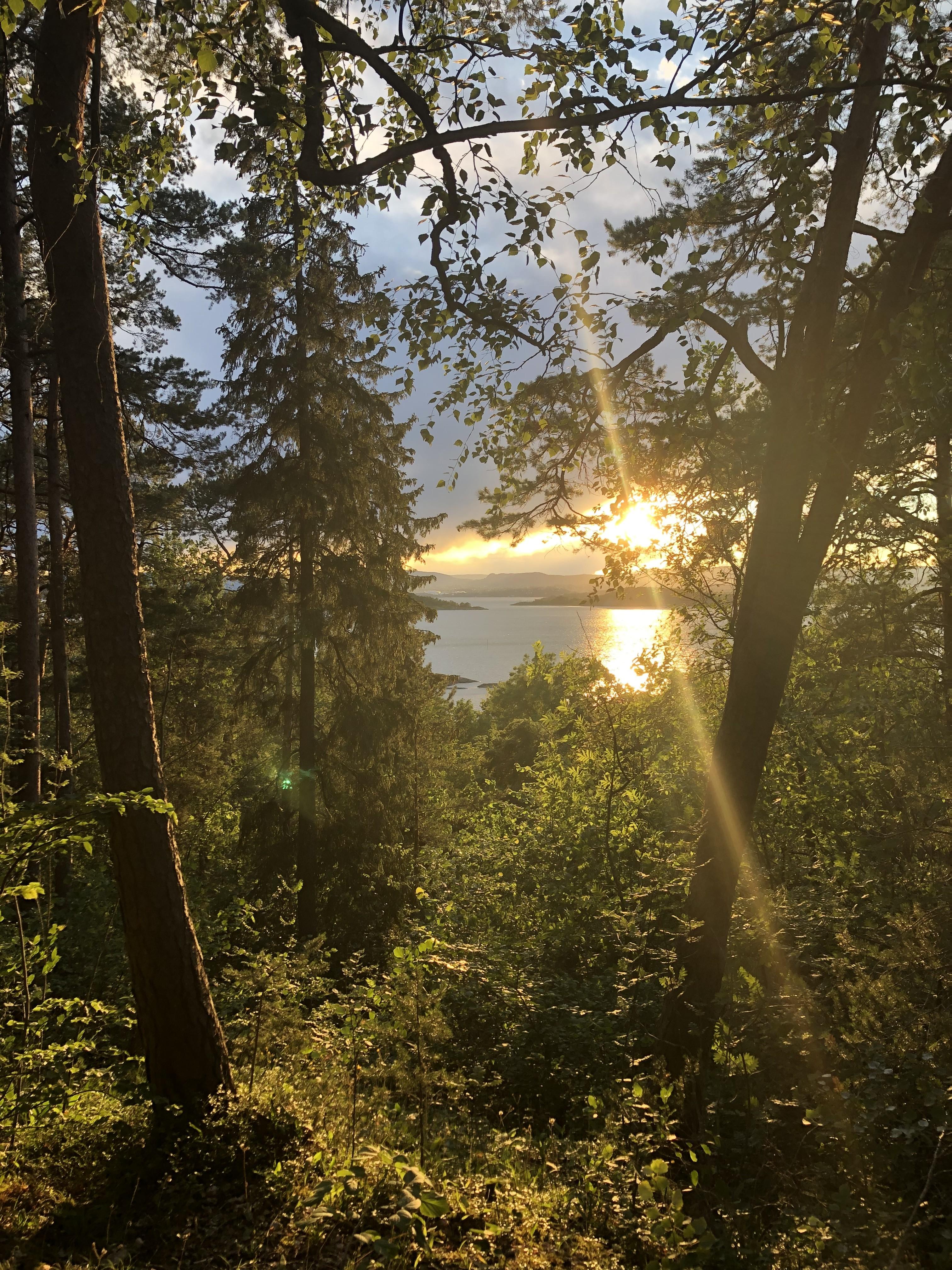 første natt på solvik 2019